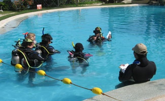 PADI IDC Confined Water Evaluations